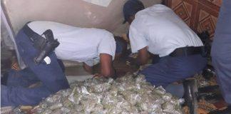Huge dagga haul, police discover stash under bed, Zastron. Photo: SAPS