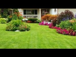 Landscaping Ideas For Front Yard and Backyard. Photo: YouTube