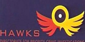 Hawks, search and seizure, Free State gambling board offices