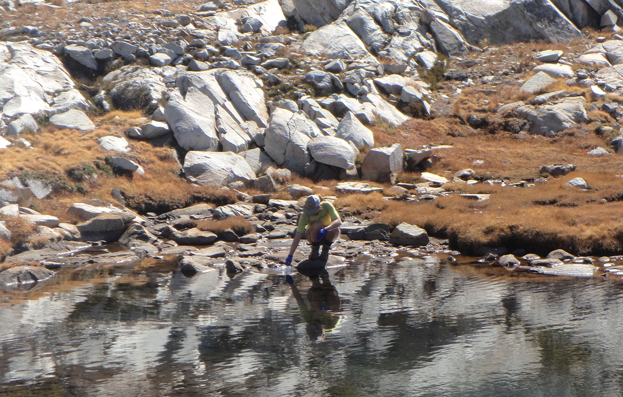 Researcher Colleen Kamoroff collects water samples in Sequoia Kings Canyon National Park in California, USA.
