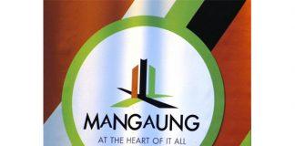 Departments debt to Mangaung municipality a shame