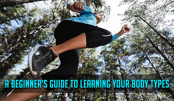 A Beginner's Guide to Learning your Body Types