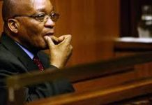Zuma's advocate withdraws. Photo: Die Vryburger