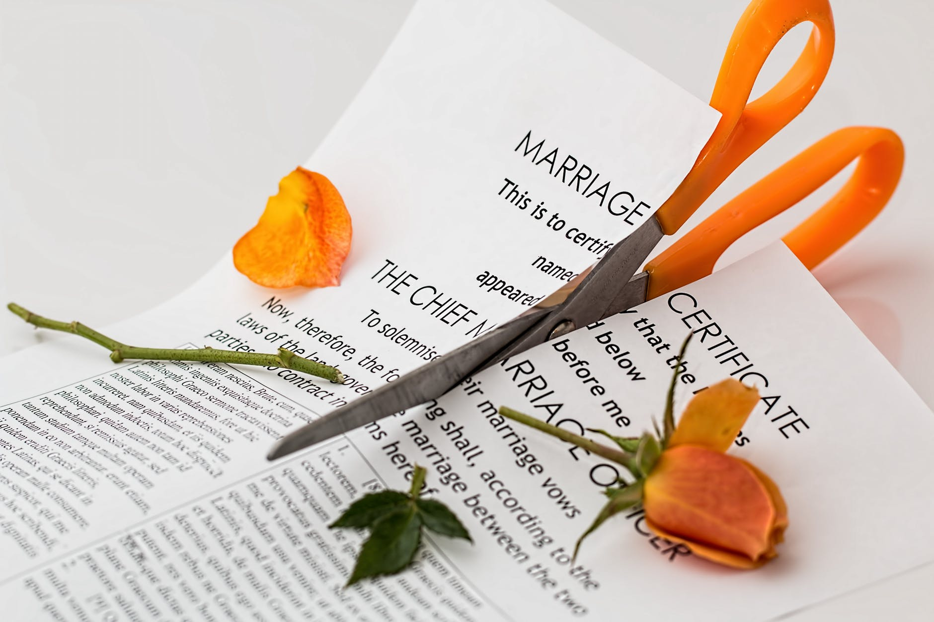 Divorced 4 immensely simple ways to move on south africa today if solutioingenieria Images