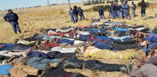 113 Illegal miners arrested. Photo: SAPS