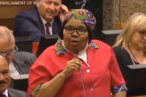 South Africa's unique parliamentary processes a joke. Photo: You Tube