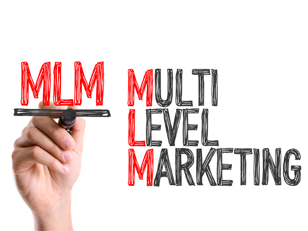how to choose the right mlm business opportunity south africa today