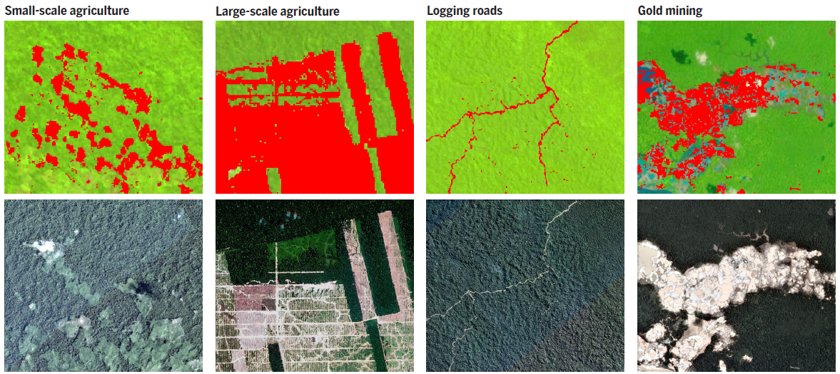 New study provides blueprint to translate satellite data into detecting forest loss with landsat based glad alerts top and identifying deforestation drivers malvernweather Images