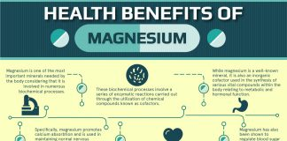 magnesium important for our bodies