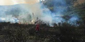 Illegal land occupation at Pietermaritzburg. Photo: Die Vryburger