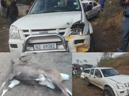 Poachers in high speed Chase, Tugela. Photo: RUSA