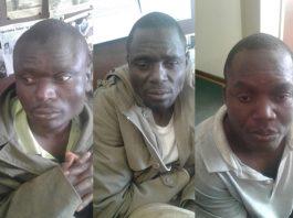 Three poachers escape from Vryburg prison. Photo: SAPS