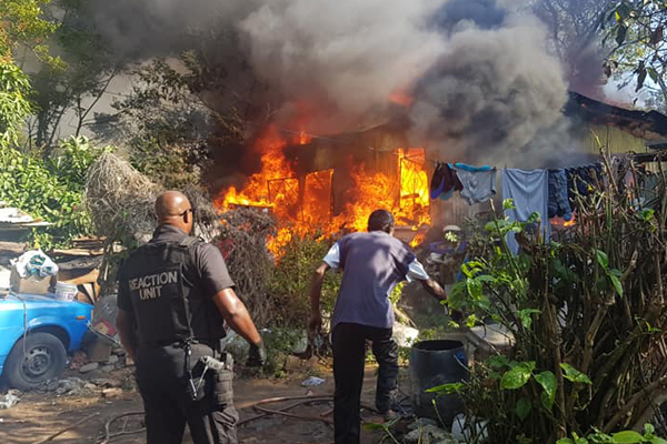Dogs rescued in house fire, Verulam. Photo: RUSA