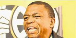 Pressure mounts on Ramaphosa to get rid of the North West leaders. Photo: Die Vryburger