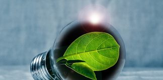 Go Green By Implementing These Simple Changes Into Your Life