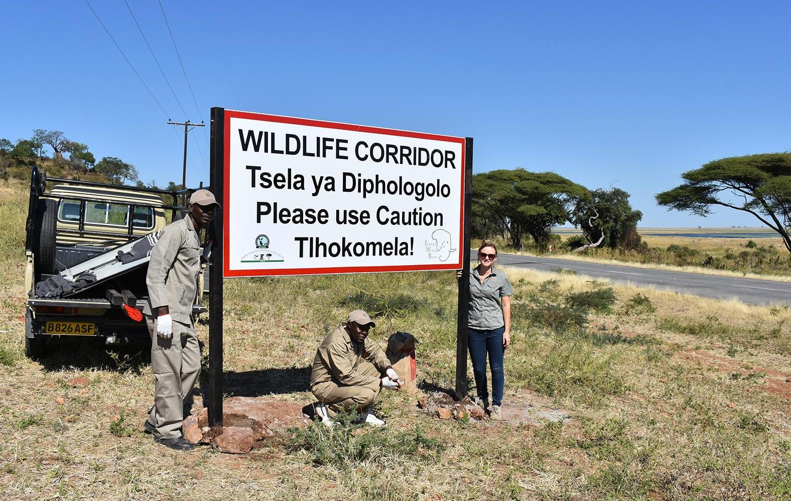 Elephants Without Borders staff installing a sign that cautions the public about a wildlife corridor in Kasane, Botswana.