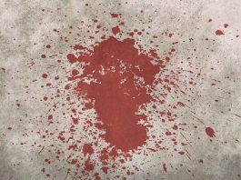 Farm attack, bullet hits bible, elderly trio savagely beaten, Buhrmansdrif