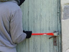 Farm attack, dog poisoned, elderly couple brutalized, Wolmaransstad