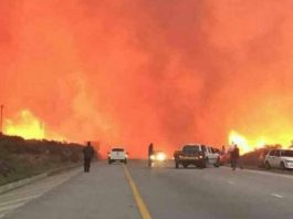 Massive fires raging in the Free State. Photo: BKA