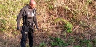 Man kidnapped, beaten, stabbed and left for dead, Cottonlands. Photo: RUSA
