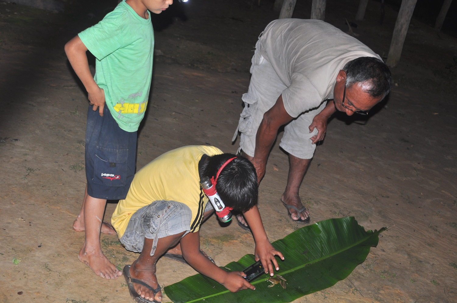 Antonio Jiménez supervising his young teammates on collection and photography of a local frog / toad.