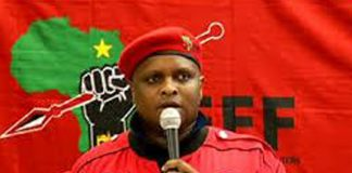It appears that the EFF was involved in VBS bank plundering. Photo: Die Vryburger