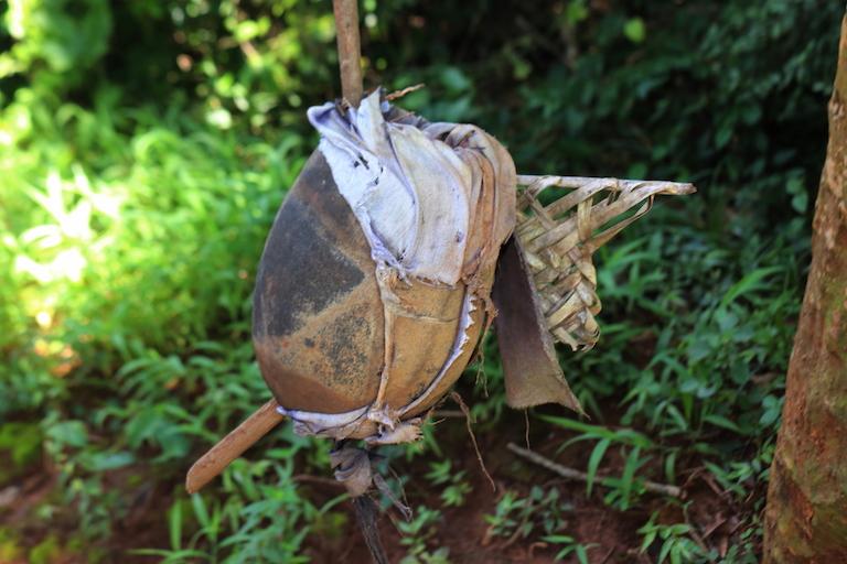One of the fingos, or protective talismans, guarding Kaya Kauma. Image by Sophie Mbugua for Mongabay.