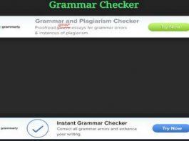 Free Grammar Checker to Check Grammar Errors