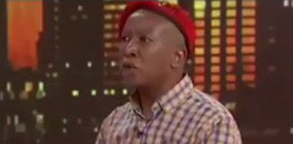 Malema: Incompetence of black lawyers cost EFF in AfriForum cases. Photo: eNCA