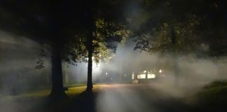 Farm attack, man (76) and employee tied up, robbed, Phalaborwa
