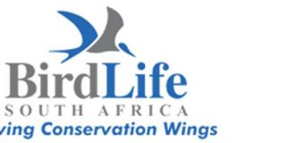 Government conserving Africa-Eurasian Migratory Waterbirds