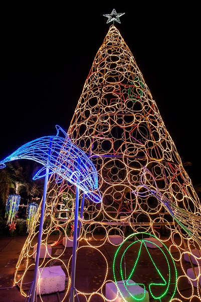 Port Elizabeth's beachfront will be lit up by a giant Christmas tree 13 metres tall when it is officially unveiled in the Bayworld parking area tomorrow. Picture: Supplied