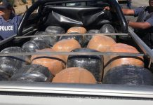 Bags of compressed dagga worth R1.6 mil confiscated, Three Sisters. Photo: SAPS