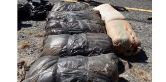180 kg of dagga recovered, two arrested, Campbell. Photo: SAPS