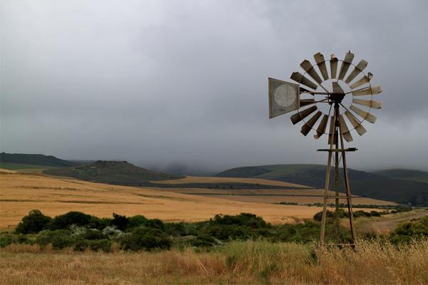 412 farm attacks, 59 farm murders in South Africa, Jan to Nov 2018