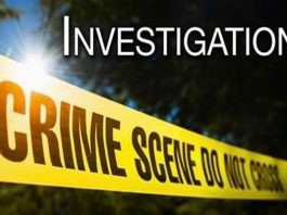 Search launched for murder suspect pays off, Despatch
