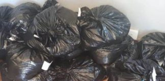 Stop and search uncovers R210k worth of dagga, Winterton. Photo: SAPS