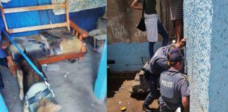 PE gang violence, SAPS operations net 119 suspects. Photo: SAPS