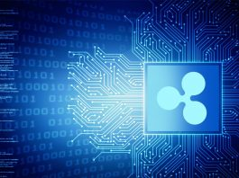 5 Reasons to invest in Ripple XRP in this year
