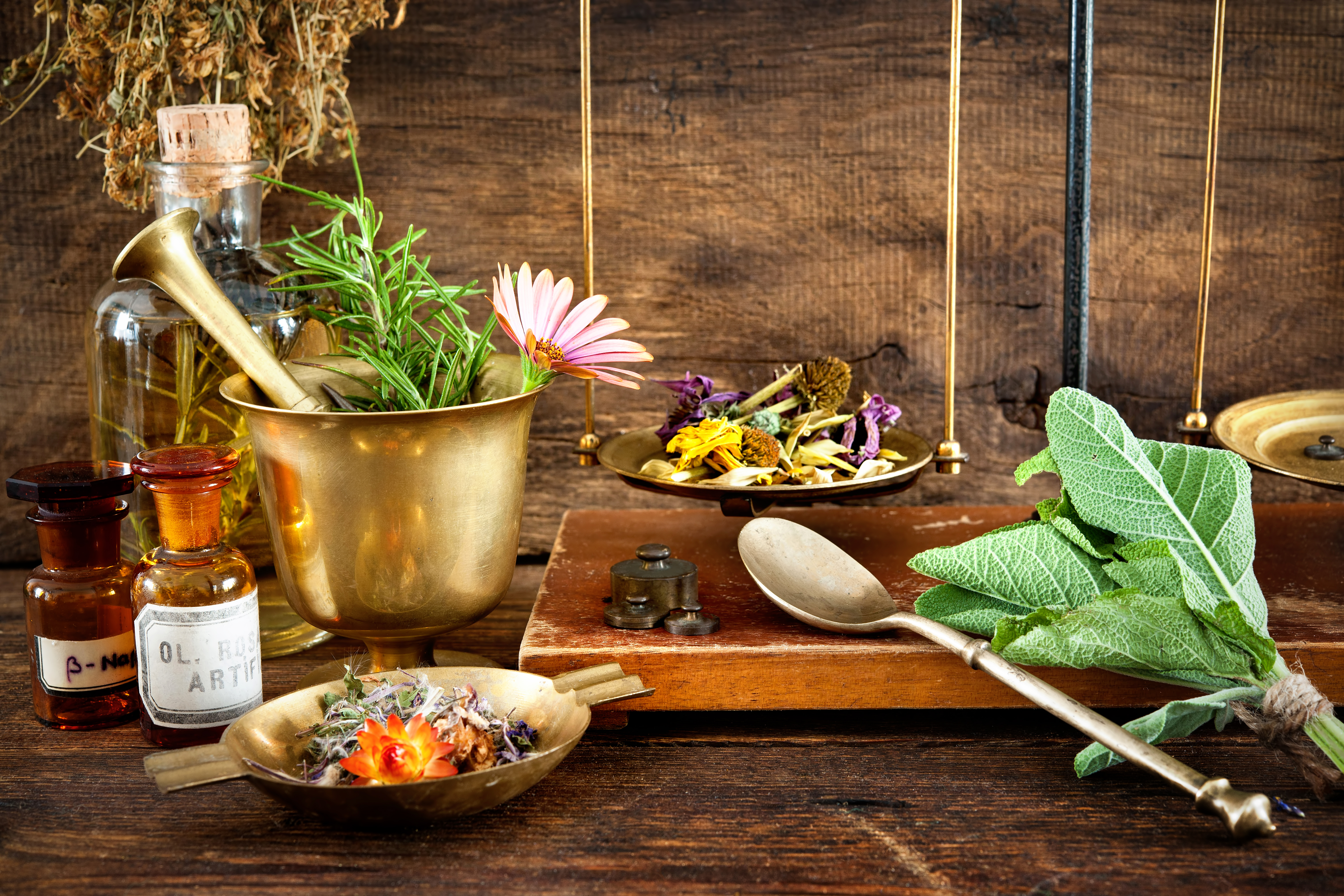 Natural Remedies for Treating Sexual Impotence | South
