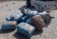 R1.5 mill worth of dagga seized, EC. Photo: SAPS