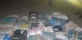 R2 million worth of dagga found abandoned. Photo: SAPS