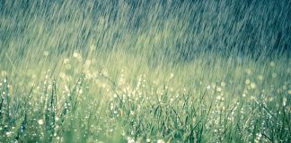 There needs to be a more systematic approach to classifying rainfall seasonality in South Africa. Shutterstock