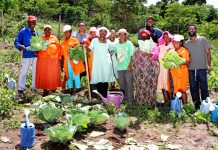Garden helps Pinetown community go and go