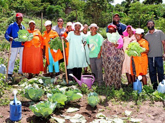 Garden helps Pinetown community go and go