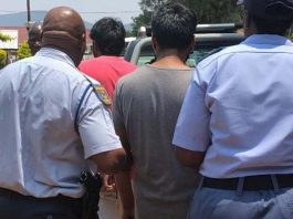 Dismembered body parts of missing woman found, Burgersfort. Photo: SAPS