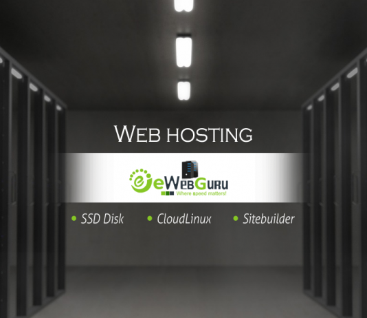 Complete and proper details that you all need to know about the finest Windows hosting services