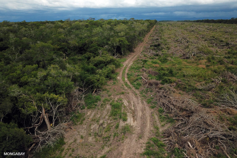 Forest in the transition zone between chaco and cerrado biomes being cleared for soybeans. Photo by Rhett A. Butler.