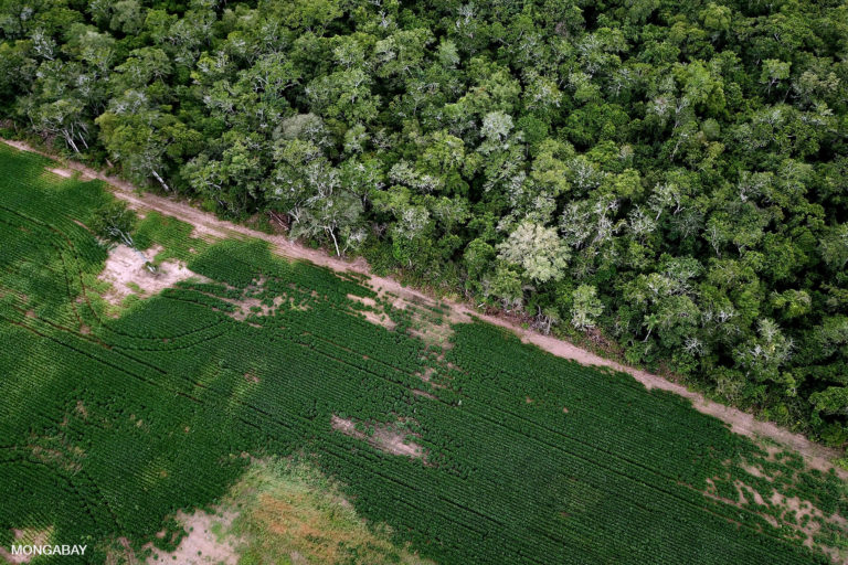 Soy field and cerrado / chaco / Amazon transition forest. Photo by Rhett A. Butler for Mongabay.