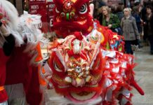What did Chinese South Africans do to Celebrate Chinese New Year?